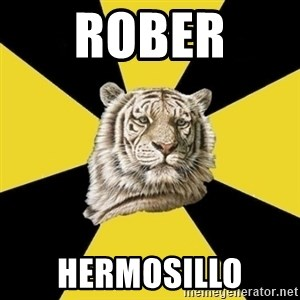 Wise Tiger - ROBER  HERMOSILLO