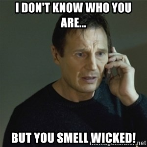 I don't know who you are... - I don't know who you are... but you smell wicked!