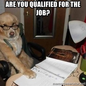 Financial advisor dog - are you qualified for the job?
