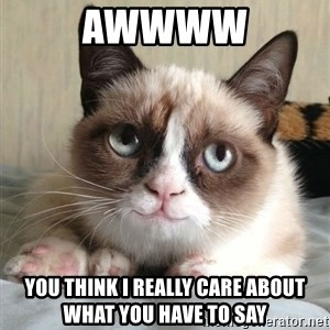 happy grumpy cat is happy - Awwww You think i really care about what you have to say