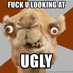 Crazy Camel lol - FUCK U LOOKING AT  UGLY