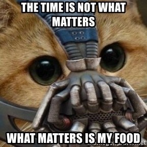 bane cat - THE TIME IS NOT WHAT MATTERS WHAT MATTERS IS MY FOOD