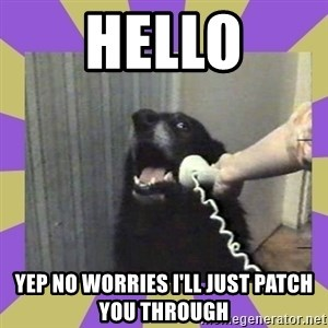 Yes, this is dog! - HELLO YEP NO WORRIES I'LL JUST PATCH YOU THROUGH