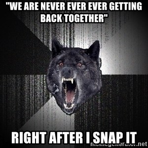 "Insanity Wolf - ""We are never ever ever getting back together"" Right after I snap it"