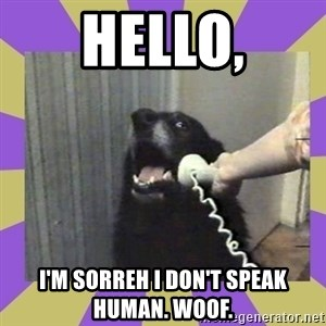 Yes, this is dog! - Hello, I'M SORREH I DON'T SPEAK HUMAN. WOOF.