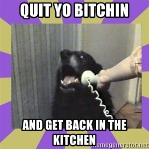 Yes, this is dog! - QUIT YO BITCHIN AND GET BACK IN THE KITCHEN