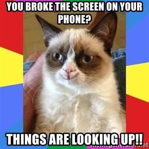 Grumpy Cat Smiling - You broke the screen on your phone? Things are looking up!!