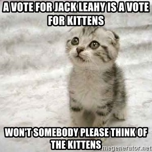 The Favre Kitten - A vote for Jack Leahy is a vote for Kittens Won't somebody please think of the kittens