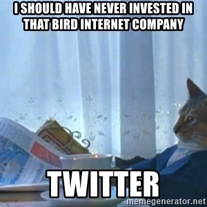 newspaper cat realization - I should have never invested in that bird internet company Twitter