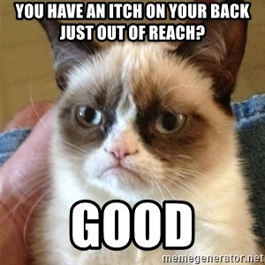 Grumpy Cat  - you have an itch on your back just out of reach? good