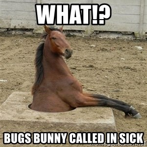 Hole Horse - what!? bugs bunny called in sick