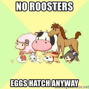 Harvest Moon - No roosters eggs hatch anyway