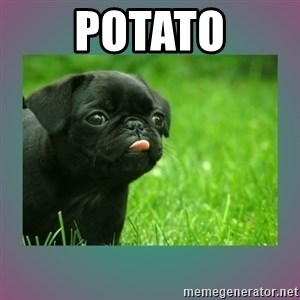 derp - PotatO