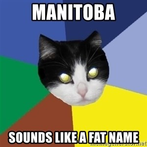 Winnipeg Cat - manitoba sounds like a fat name