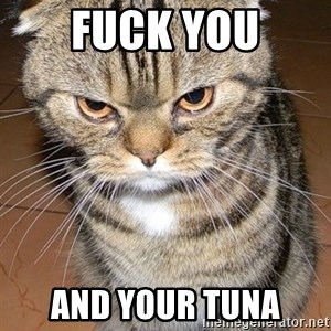 angry cat 2 - fuck you and your tuna
