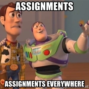 Tseverywhere - assignments assignments everywhere
