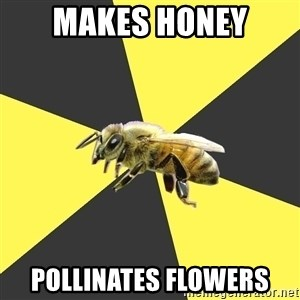 British High School Honeybee - makes honey pollinates flowers