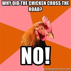 Anti Joke Chicken - why did the chicken cross the road? no!