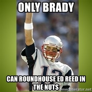 tom brady - OnLy Brady Can roundhouse ed reed in the Nuts