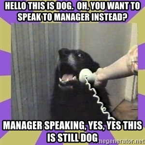 Yes, this is dog! - hello this is dog.  oh, you want to speak to manager instead? manager speaking, yes, yes this is still dog