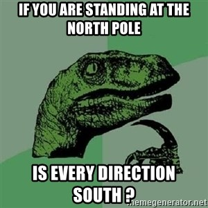 Philosoraptor - If you are standing at the north pole is every direction south ?