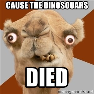 Crazy Camel lol - cause the dinosouars  died