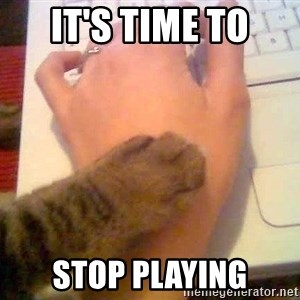 It's time to stop cat - It's time to stop playing
