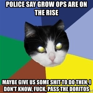 Winnipeg Cat - police say grow ops are on the rise maybe give us some shit to do then, i don't know, fuck, pass the doritos