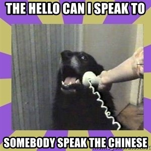 Yes, this is dog! - THE HELLO CAN I SPEAK TO SOMEBODY SPEAK THE CHINESE