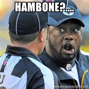Mike Tomlin Oh SHIT - hambone?....