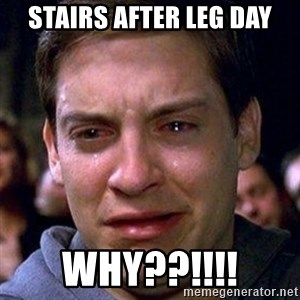 spiderman cry - STAIRS AFTER LEG DAY why??!!!!