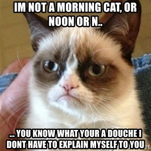 Grumpy Cat  - im not a morning cat, or noon or n.. ... you know what your a douche i dont have to explain myself to you
