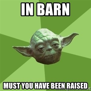Advice Yoda Gives - in barn must you have been raised
