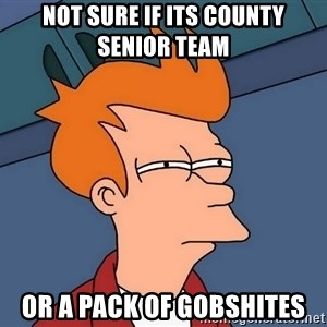 Futurama Fry - Not sure if its county senior team or a pack of gobshites