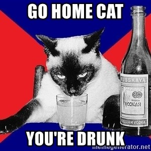 Alco-cat - GO HOME CAT YOU'RE DRUNK