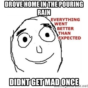 everything went better than expected - Drove Home in the pouring rain Didnt get mad once