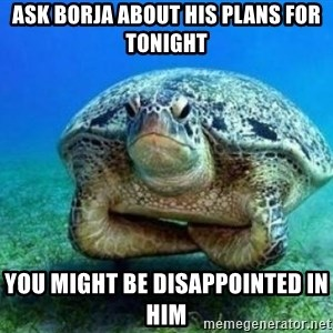 disappointed turtle - ask borja about his plans for tonight you might be disappointed in him