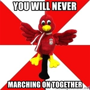 Liverpool Problems - YOu WILL NEVER MARCHING ON TOGETHER