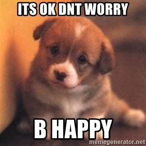cute puppy - its ok dnt worry b happy