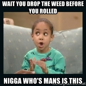 Raven Symone - wait you drop the weed before you rolled nigga who's mans is this