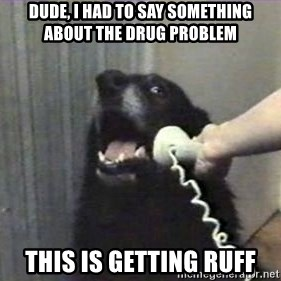 hello? yes this is dog - Dude, i had to say something about the drug problem this is getting ruff