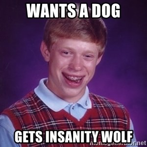 Bad Luck Brian - wants a dog gets insanity wolf