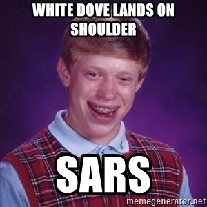 Bad Luck Brian - white dove lands on shoulder sars