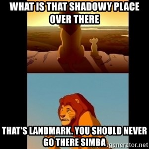 Lion King Shadowy Place - What is thAt shadowy place over there That's landmark. You should never go there simbA