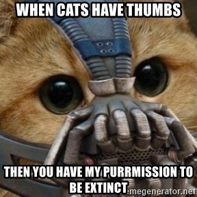 bane cat - When cats have thUmbs Then you have my pUrrmissiOn to be extinct