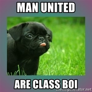 derp - Man United  Are class boi