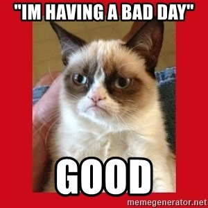 "No cat - ""Im having a bad day"" good"
