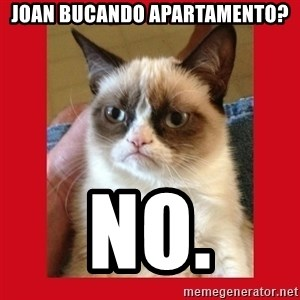 No cat - JOan bucando apartamento? No.