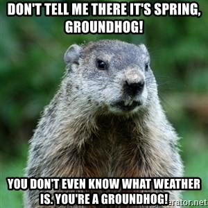grumpy groundhog - Don't tell me there it's spring, groundhog! You don't even know what weather is. you're a groundhog!