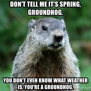 grumpy groundhog - Don't tell me it's spring, groundhog. you don't even know what weather is. you're a groundhog.